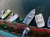 Access boats.  These are the personal small boats of owners needing to get from the pier to their anchored sailboats.  I liked the variety of color in this shot.