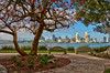 An HDR of downtown San Diego taken from &quot;Bay View Park&quot; on Coronado.