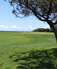 The 14th green at NAS North Island's Sea &amp; Air golf course with a great view of the Pacific Ocean.