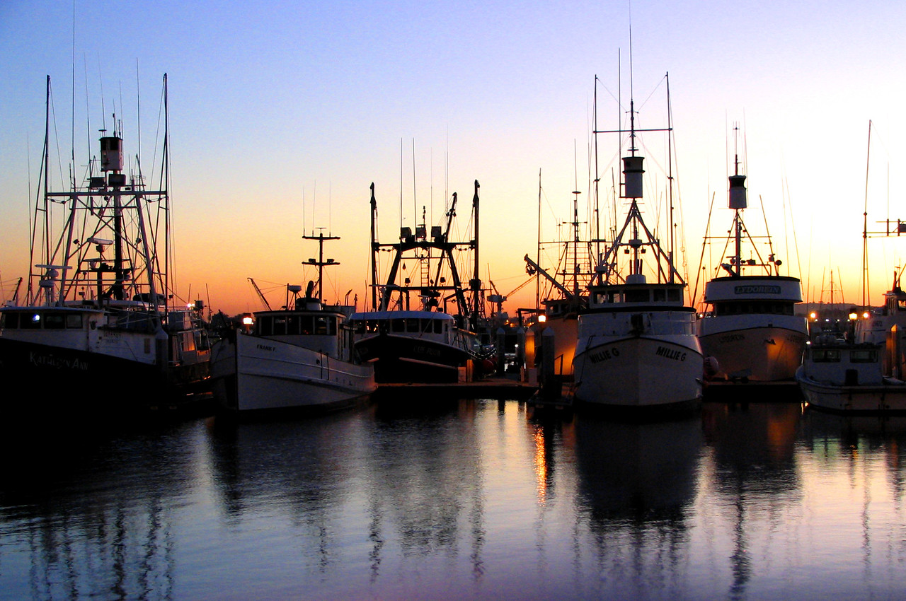 The Fishing Fleet at Sunset in San Diego